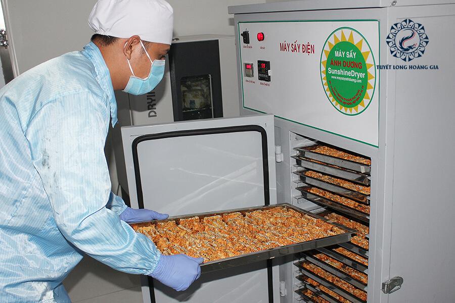 Máy sấy và xử lý đế nấm đông trùng hạ thảo
