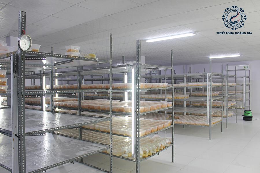 trang trại nuôi đồng trùng hạ thảo top 1